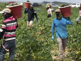 Farmworkers raise concerns